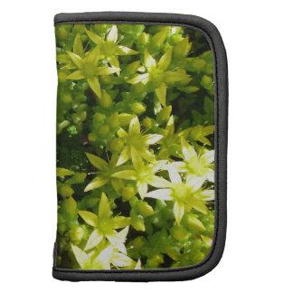 green star like flowers herbal plant planner