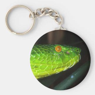 Green Stejneger's pit viper snake Keychain