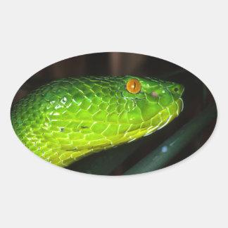 Green Stejneger's pit viper snake Oval Sticker