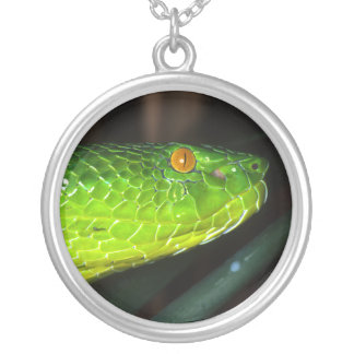 Green Stejneger's pit viper snake Silver Plated Necklace