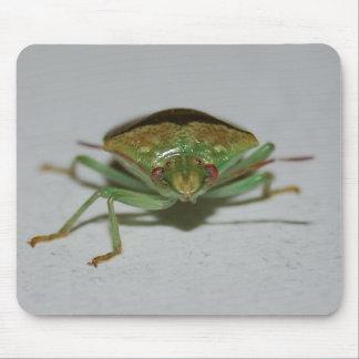 Green Stink Bug mousepad