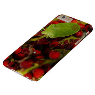 Green Stink Bug on Sumac Barely There iPhone 6 Plus Case