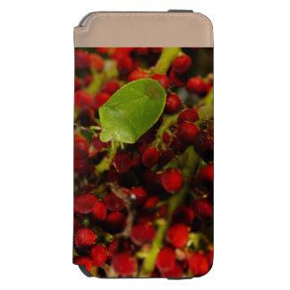 Green Stink Bug on Sumac Incipio Watson™ iPhone 6 Wallet Case