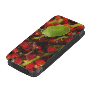 Green Stink Bug on Sumac iPhone 5 Pouch