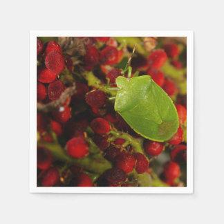 Green Stink Bug on Sumac Napkin