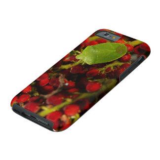 Green Stink Bug on Sumac Tough iPhone 6 Case