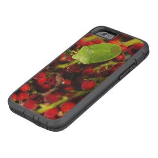 Green Stink Bug on Sumac Tough Xtreme iPhone 6 Case