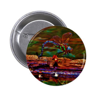 Green striped Teal & purple Dragonfly 2 Inch Round Button