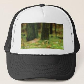green stumps of wet woods trucker hat