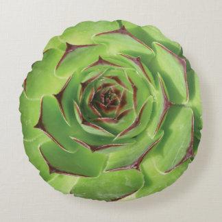 Green Succulent Cactus Spring Flower Round Pillow