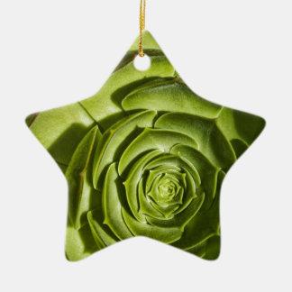Green Succulent Ceramic Ornament