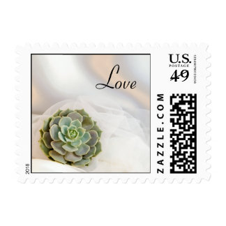 Green Succulent on White Wedding Love Postage
