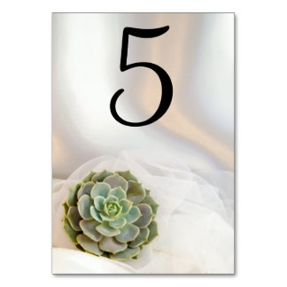 Green Succulent on White Wedding Table Numbers