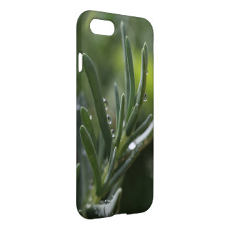Green Succulent Plant Water Droplets IPhone Case