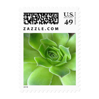 Green Succulent Plants Postage Stamps