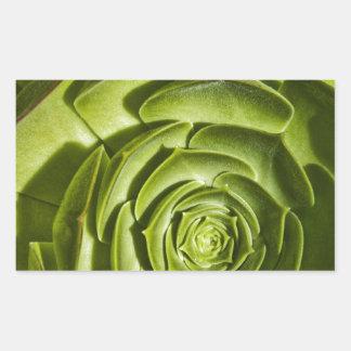 Green Succulent Rectangle Sticker