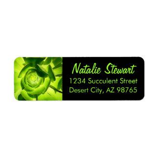 Green Succulent Square by Amy Vangsgard Return Address Label