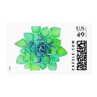 Green Succulent Stamp