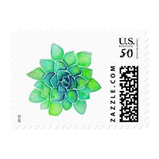 Green Succulent Stamp