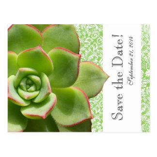 Green Succulent Vintage Damask save the date Postcards