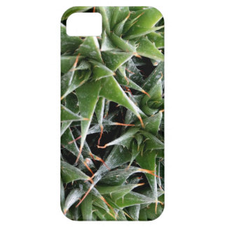 Green Suculents iPhone SE + iPhone 5/5S iPhone SE/5/5s Case