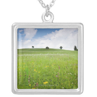 green summer meadows in bavaria, ostallgäu with Silver Plated Necklace