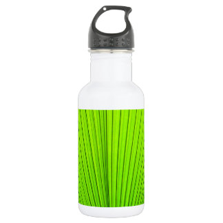 Green texture of palm tree leaf. Nature background Water Bottle