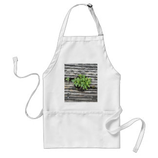 Green Themed, Green Plants Emerge And Isolated By Adult Apron