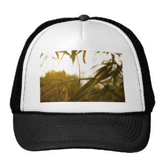 Green Themed, Long And Green Leaves Of A Bamboo Tr Trucker Hat