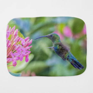 Green Throated Carib Hummingbird Burp Cloth