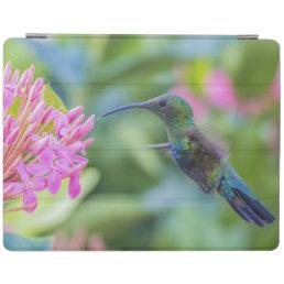 Green Throated Carib Hummingbird iPad Cover