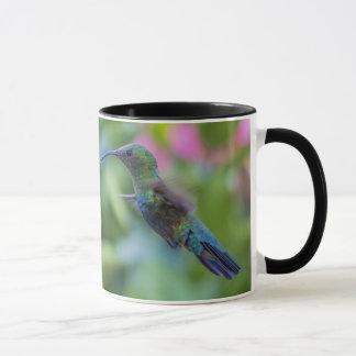 Green Throated Carib Hummingbird Mug