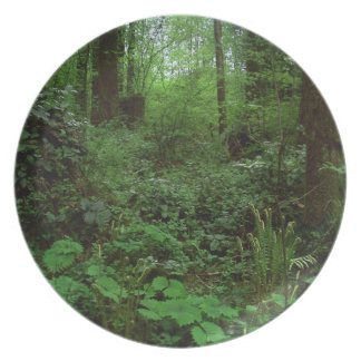 Green Timbers Spring 1 Melamine Plate