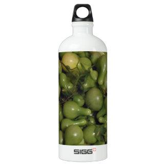 Green Tomatoes Aluminum Water Bottle