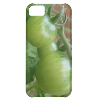 Green Tomatoes iPhone 5 Case