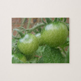 Green Tomatoes Puzzle