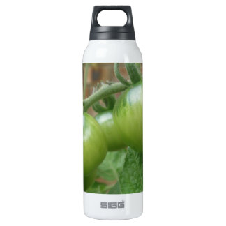 Green Tomatoes Thermos Bottle