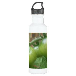 Green Tomatoes Water Bottle