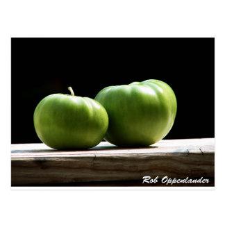 Green Tomatos Postcard