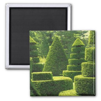 Green Topiary - Magnet #1 magnet