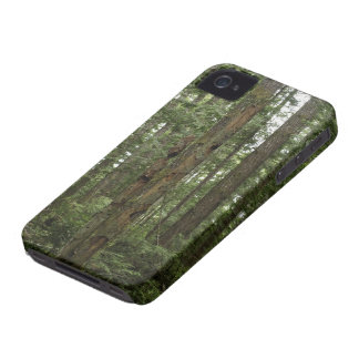 Green Totem Tree Forest Nature Scene iPhone 4 Case-Mate Cases