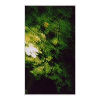 green tree at night poster