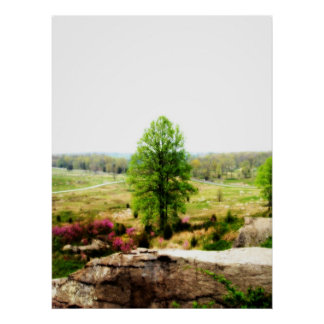 Green Tree at Round Top Posters