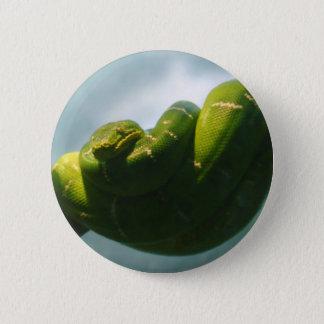 Green Tree Boa Button