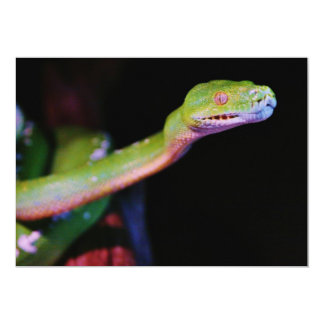 Green Tree Boa Stretching 5x7 Paper Invitation Card