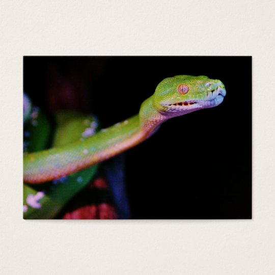 Green Tree Boa Stretching Business Card