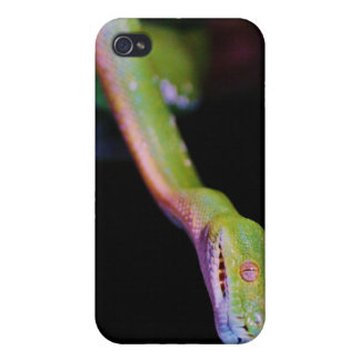 Green Tree Boa Stretching Cover For iPhone 4