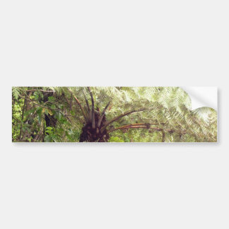 Green Tree Fern Bumper Sticker