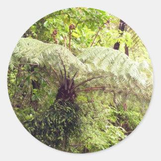 Green Tree Fern Classic Round Sticker