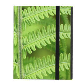 Green Tree Fern iPad Cover